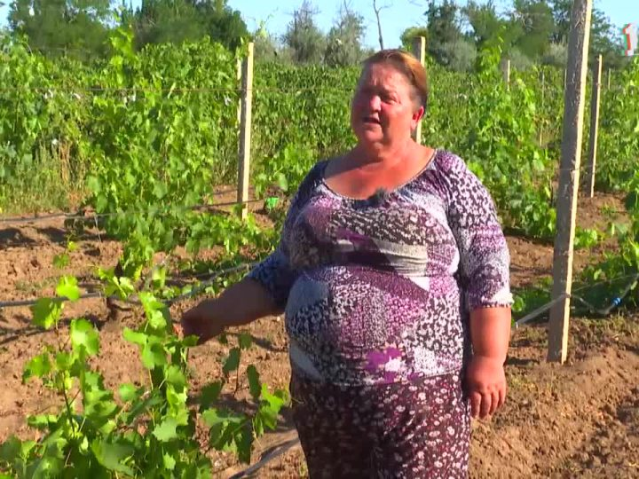 Деревенское счастье семьи Щербаковых