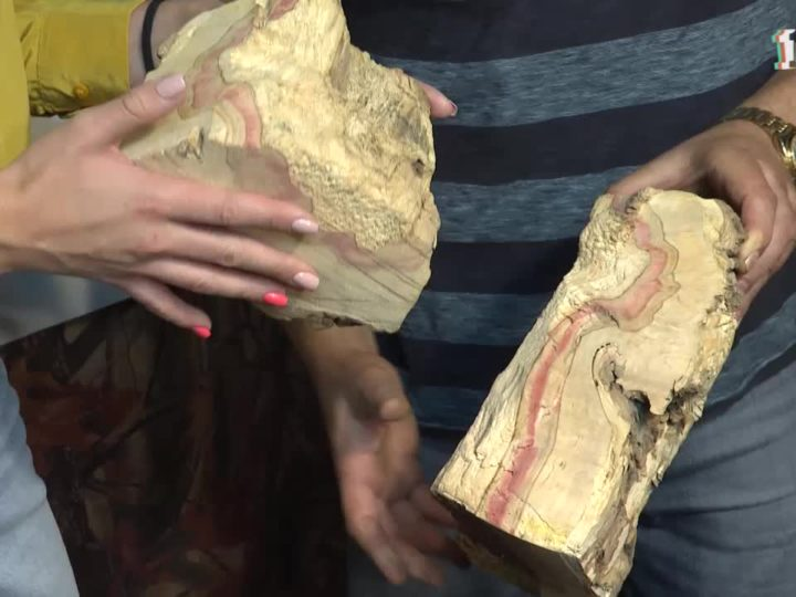 Житель Симферополя создаёт уникальные работы из дерева в сложной торцевой технике