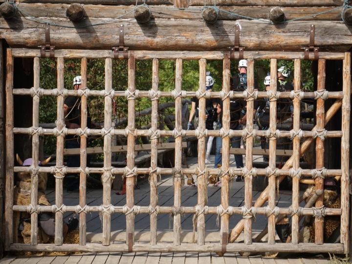 Первой командой, которая поборется за сокровища викингов, станут журналисты