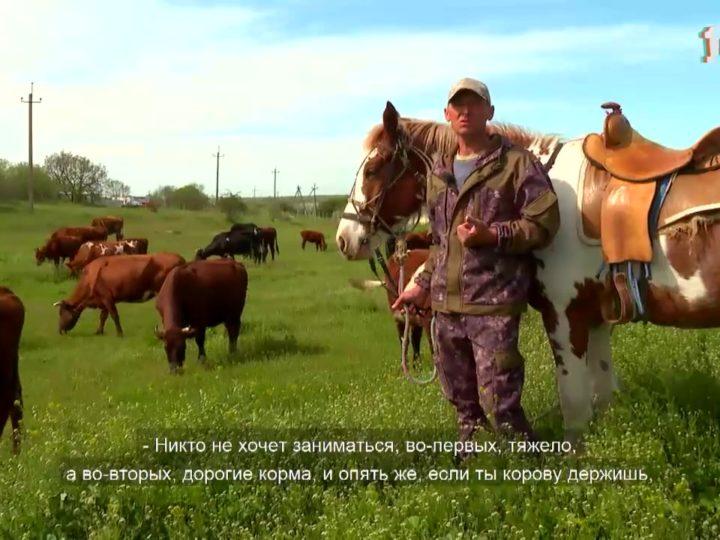 Деревенское счастье Олега Бельмаса